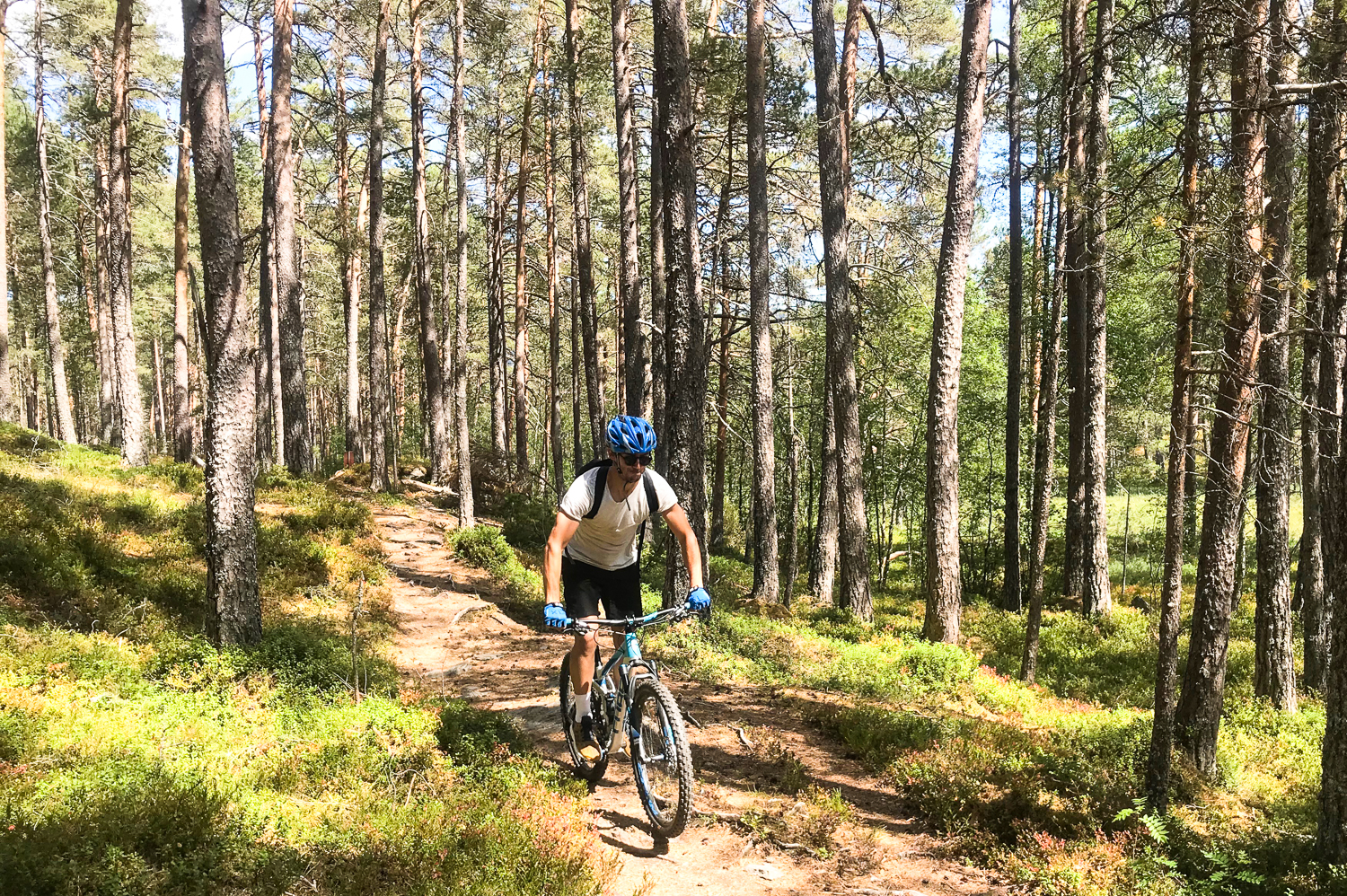 Familie mtb tur med outdoor norway